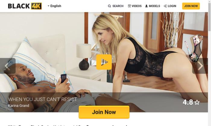 Amateur porn torrents