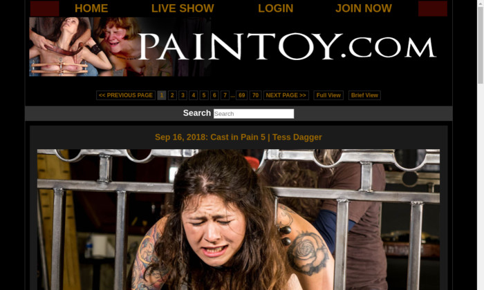 paintoy