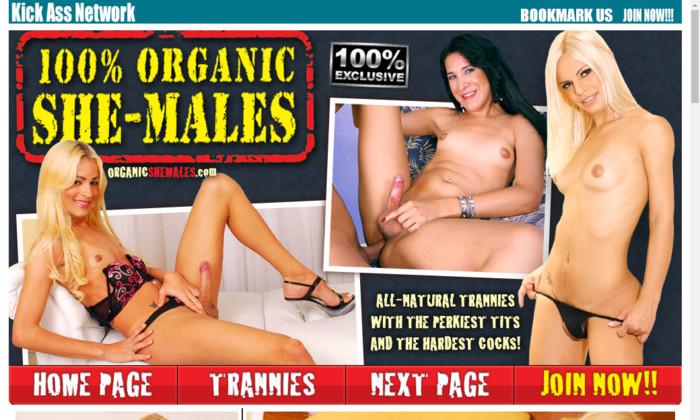 100 % organic she -males