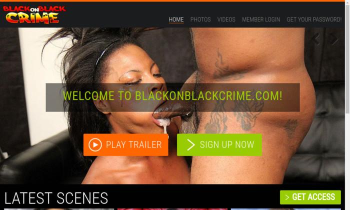 black on black crime