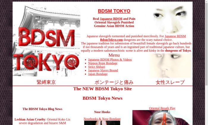 bdsm tokyo