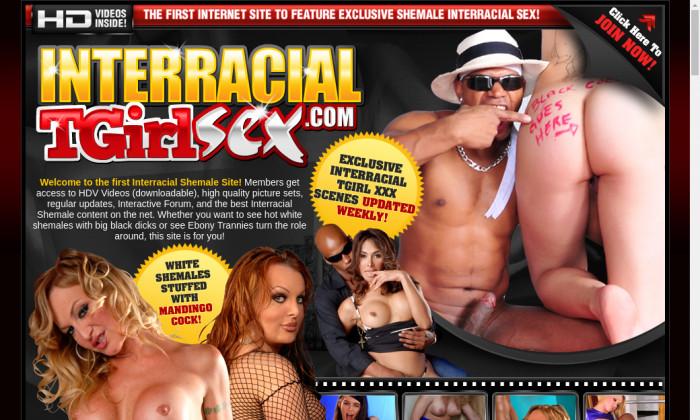 interracial t girl sex